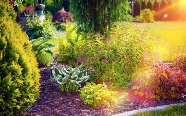 Spring is coming!! Time to get your garden back in to shape